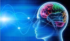 La música, el FIW y la neurociencia